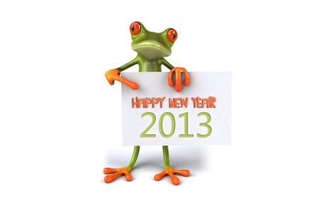 800_New Year 2013 wallpaperz frog