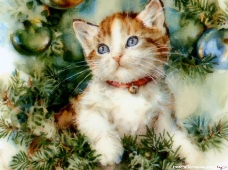 Christmas-Cat-01wallpapers-82992