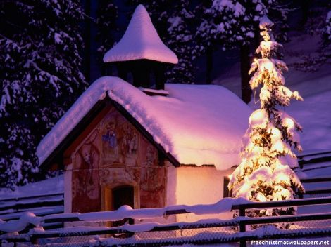 Christmas-Nature-03wallpapers-43334