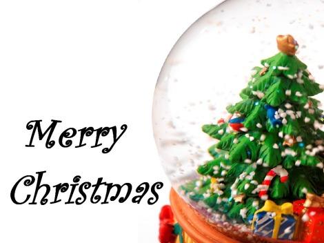globo-de-natal-christmas.snowglobe