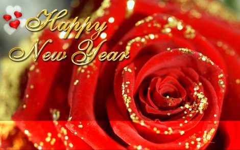 happy-new-year-4-rose