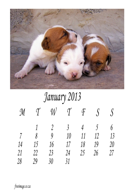 January-2013-free-calendar-animal-theme