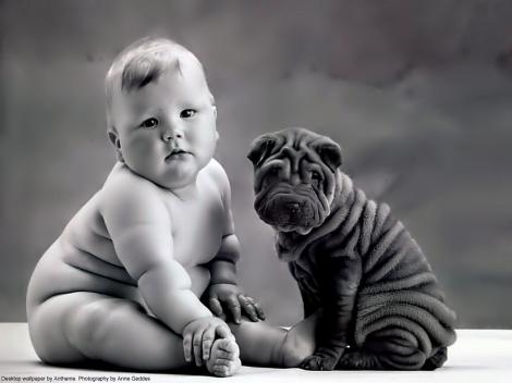 bebe-e-cachorro--anne-geddes_6217_1280x960