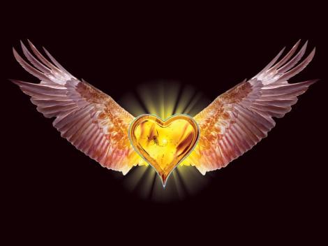 Eagle_Heart