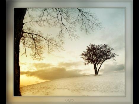 happy-winter