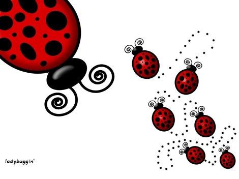 ladybuggin