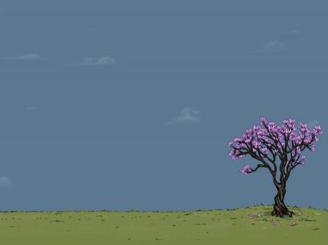 minimal-spring