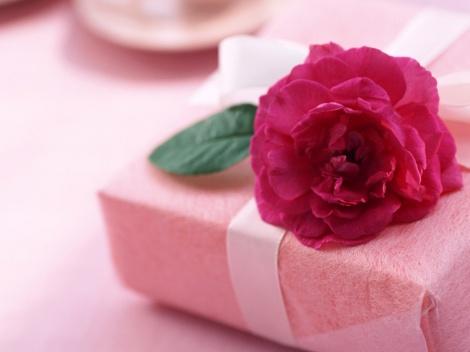 rosa-e-presente_5848_1024x768