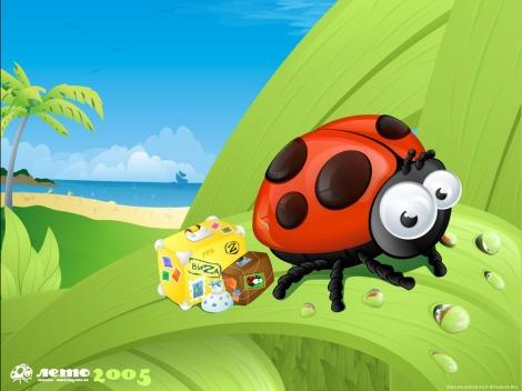 traveller-ladybug
