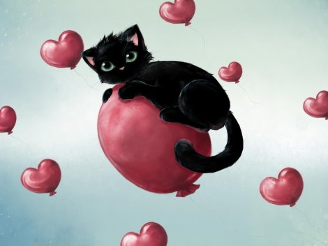 valentine-kitty.gatinho.do.amor