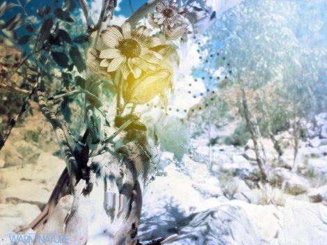 warm-nature