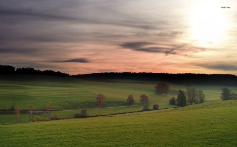10191-green-fields-at-dusk-1680x1050-nature-wallpaper