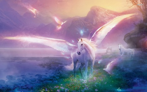 11627-horse-with-wings-1680x1050-fantasy-wallpaper