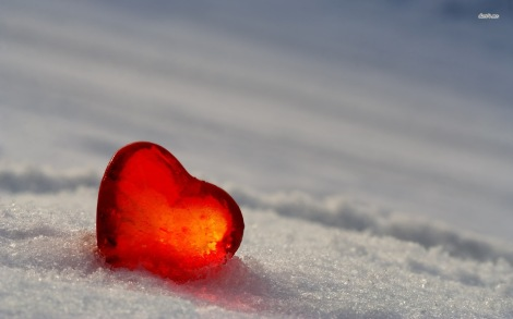 11873-frozen-heart-1680x1050-photography-wallpaper