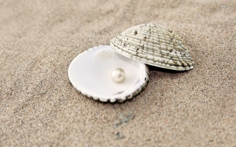 11894-pearl-in-a-shell-1680x1050-photography-wallpaper