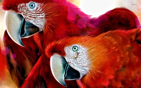 3646-scarlet-macaw-1680x1050-animal-wallpaper