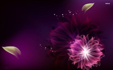7013-purple-flower-1680x1050-abstract-wallpaper