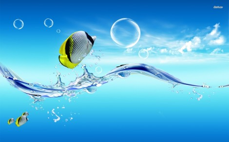 8685-fish-out-of-water-1680x1050-digital-art-wallpaper