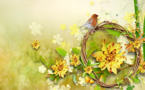 9891-sparrow-on-a-branch-1680x1050-digital-art-wallpaper