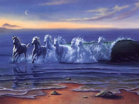 cavalos.mar