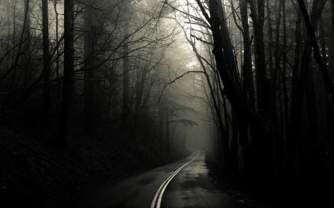 dark.road
