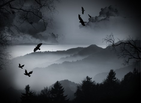 Dark%20Crows%20over%20the%20Forrest