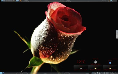 dark_rose_by_giannis12a-d36rx2p