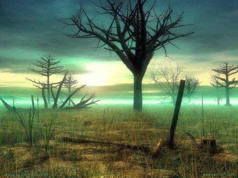 floresta.morta