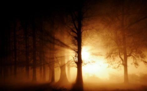 ghost-fog-halloweenweb