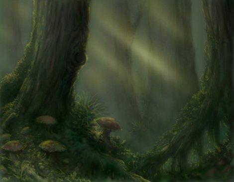Tolkien_Forest