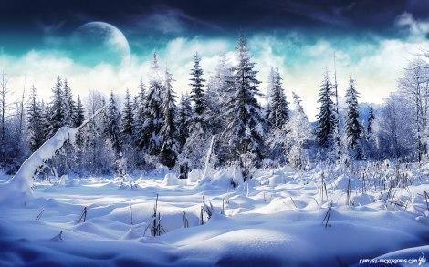 winter-wonderland-1920x1200